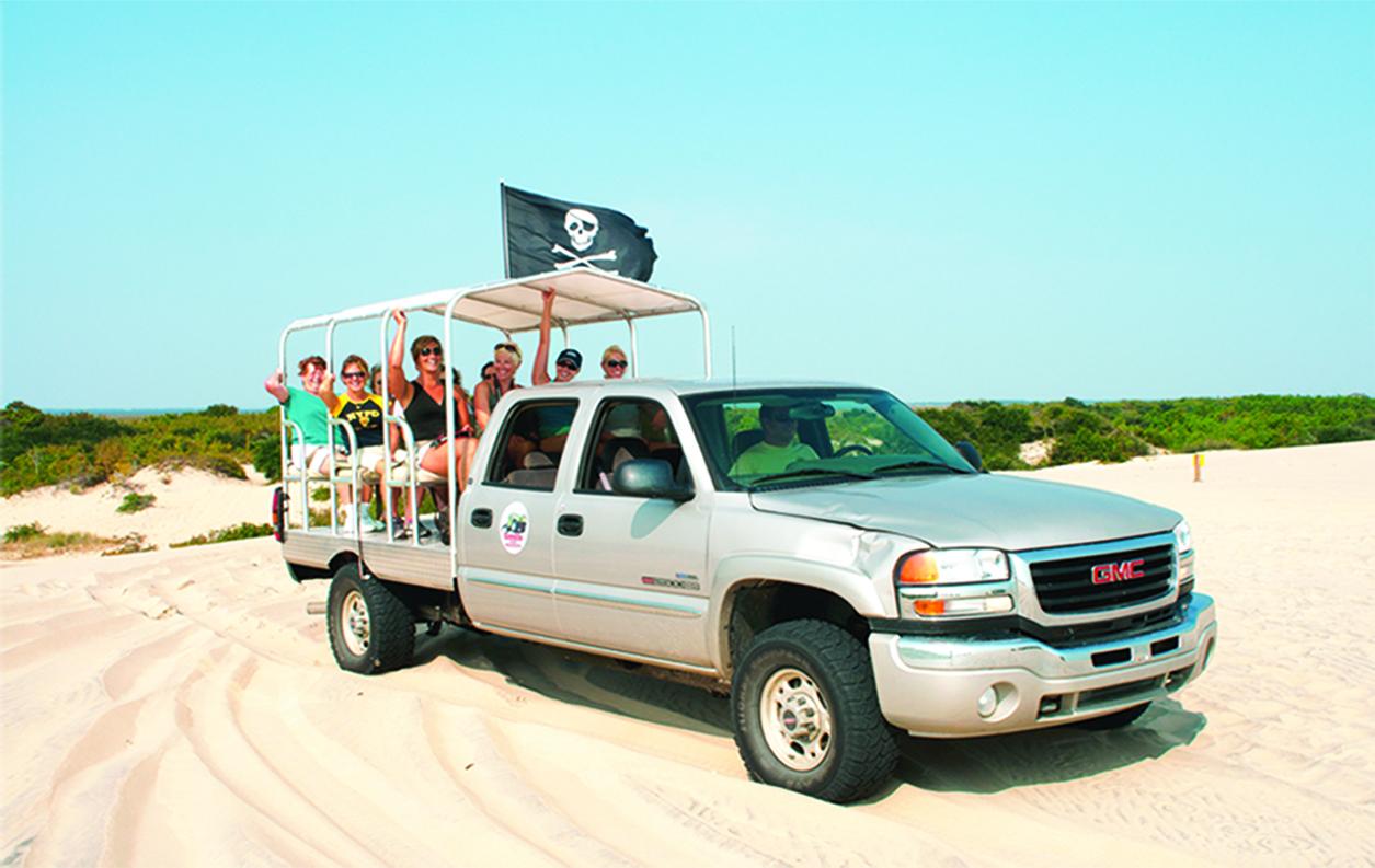 Wild horse safari truck